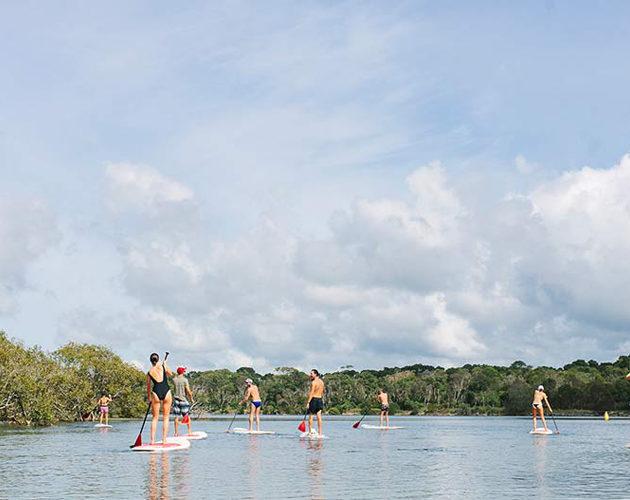 paddle boarding near Halcyon House
