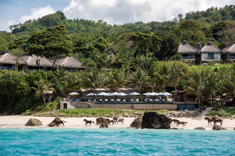 Wild Sumba Horses on the beach, Nihi Sumba surf resort perfect for a family surf trip